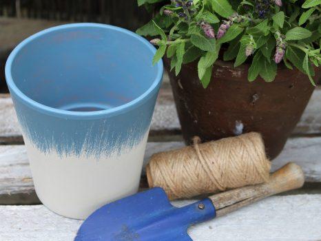 flower-pot-2852786_1920